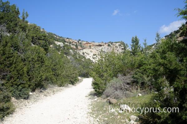 Ущелье Авакас на Кипре - не классическая достопримечательность
